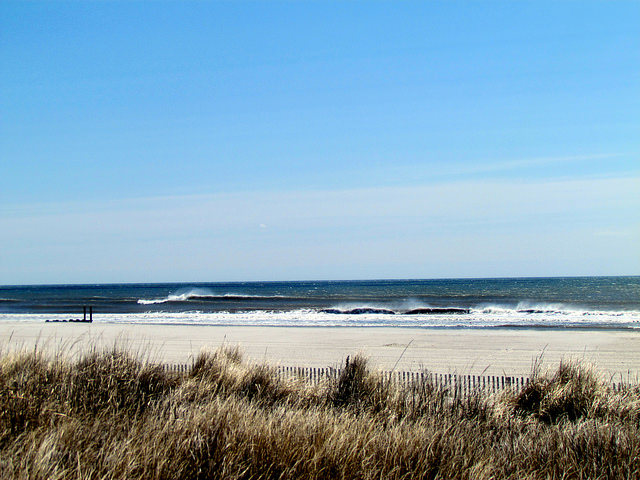 Ocean City New Jersey water temperature : Forecast & current water temp